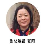 副總編輯張陽簡介